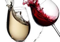 С чем пьют вино – закуски к вину