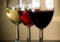 Вино сколько часов выветривается из организма