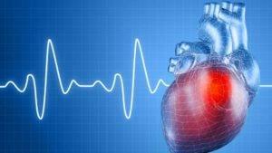 Спиртное отрицательно воздействует на работу сердца